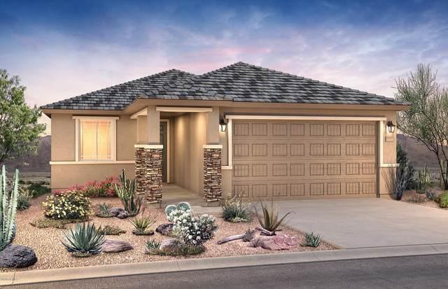 19188 W Centerra Drive, Buckeye, AZ 85326 (MLS #6153658) :: Devor Real Estate Associates