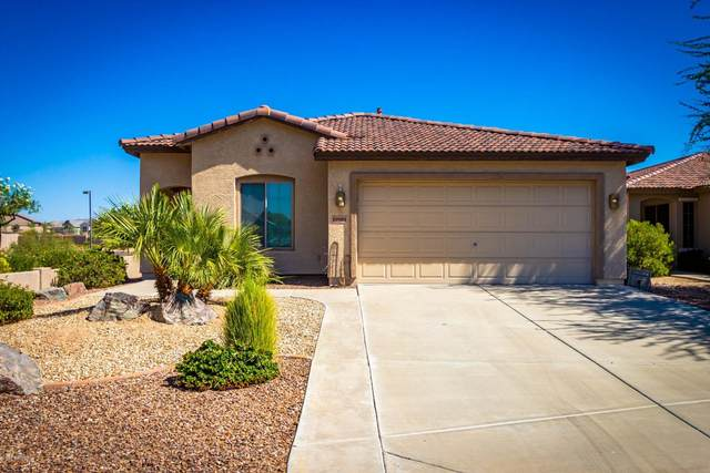 19981 N 108TH Avenue, Sun City, AZ 85373 (MLS #6153661) :: Howe Realty