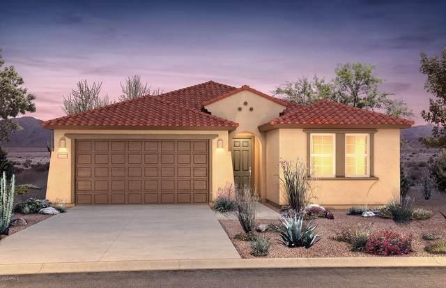 19230 W Centerra Drive, Buckeye, AZ 85326 (MLS #6153677) :: Devor Real Estate Associates