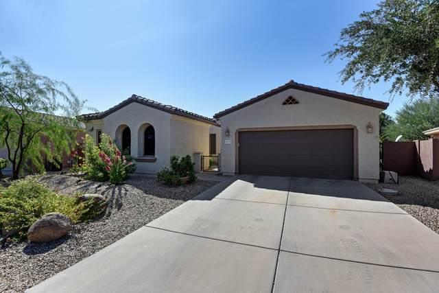 16715 W Rincon Peak Drive, Surprise, AZ 85387 (MLS #6153685) :: REMAX Professionals