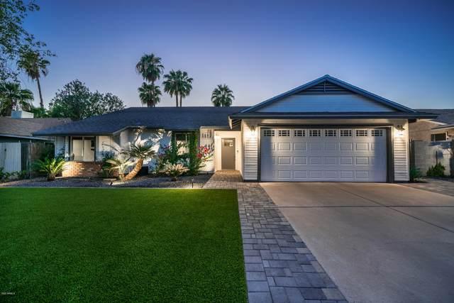 15640 N 63RD Way, Scottsdale, AZ 85254 (MLS #6153692) :: Howe Realty