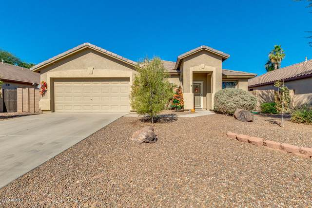 35396 N Belgian Blue Court, San Tan Valley, AZ 85143 (MLS #6153719) :: CANAM Realty Group