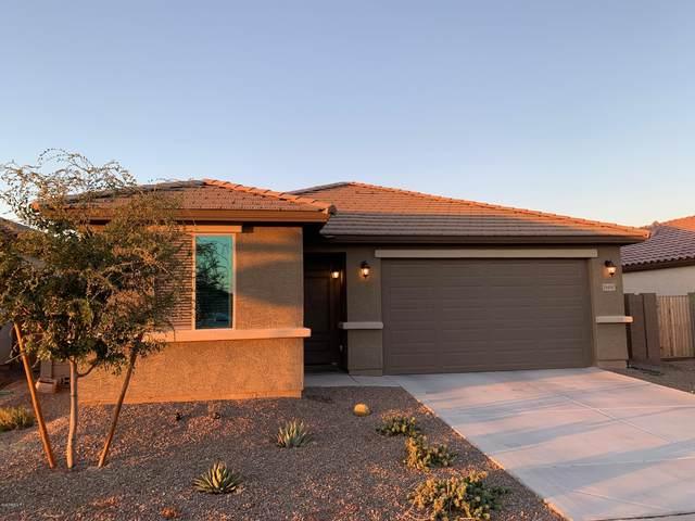 18490 W Louise Drive, Surprise, AZ 85387 (MLS #6153752) :: The AZ Performance PLUS+ Team