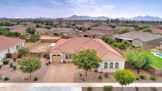 22237 E Escalante Road, Queen Creek, AZ 85142 (MLS #6153925) :: Walters Realty Group