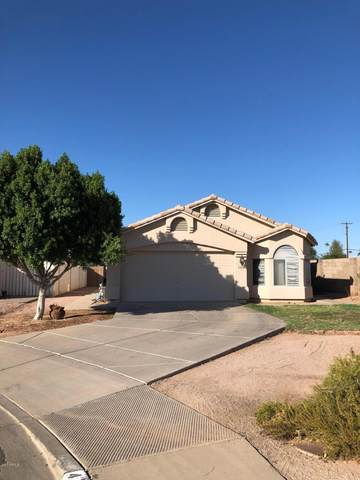 4364 E Birchwood Circle, Mesa, AZ 85206 (MLS #6153980) :: My Home Group