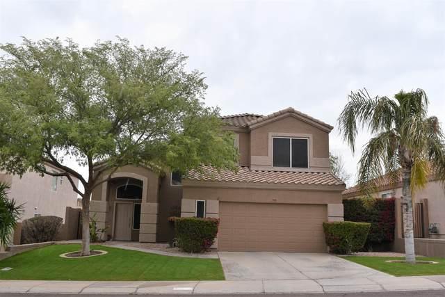 836 W Carob Drive, Chandler, AZ 85248 (MLS #6154042) :: My Home Group