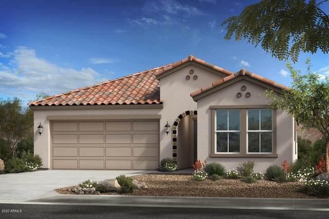 3004 E Farmdale Avenue, Mesa, AZ 85204 (MLS #6154060) :: Brett Tanner Home Selling Team