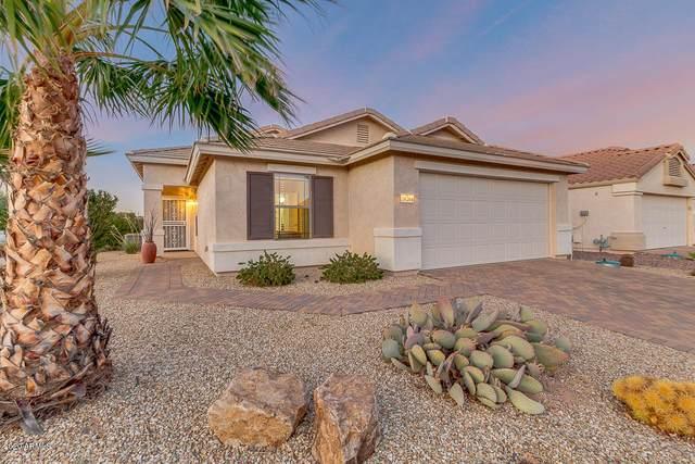 18284 W Buena Vista Drive, Surprise, AZ 85374 (MLS #6154101) :: My Home Group