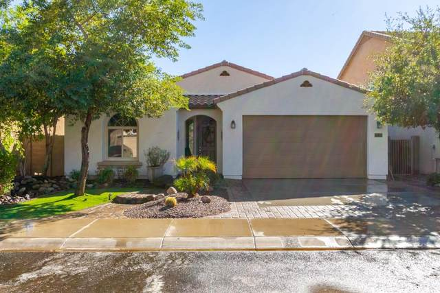 12031 W Via Del Sol Court, Sun City, AZ 85373 (MLS #6154104) :: Midland Real Estate Alliance