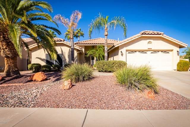 8624 W Escuda Drive, Peoria, AZ 85382 (MLS #6154115) :: BVO Luxury Group