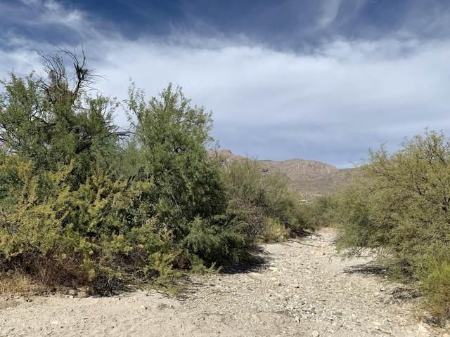 4832 N Placita Borboa, Tucson, AZ 85749 (MLS #6154133) :: The W Group