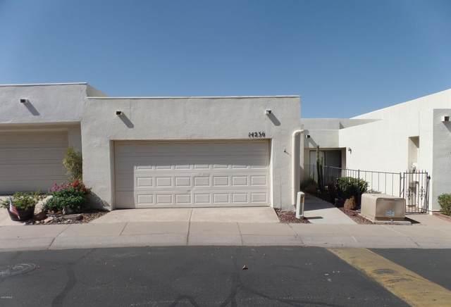 14236 N 23RD Street, Phoenix, AZ 85022 (MLS #6154143) :: The Ellens Team