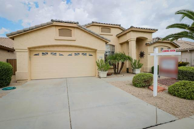 17966 W Ryans Way, Surprise, AZ 85374 (MLS #6154202) :: Keller Williams Realty Phoenix