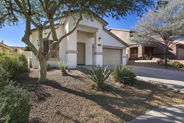 6449 W Yellow Bird Lane, Phoenix, AZ 85083 (MLS #6154217) :: Homehelper Consultants