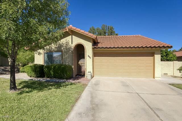 4790 E Kiva Street, Phoenix, AZ 85044 (MLS #6154240) :: The Ellens Team