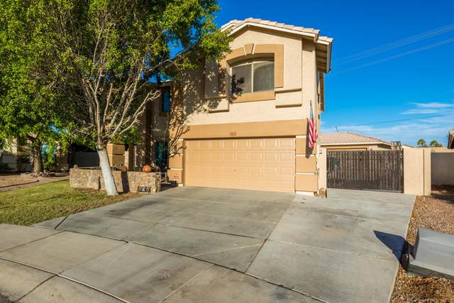 8813 N 67th Drive, Peoria, AZ 85345 (MLS #6154250) :: The Riddle Group