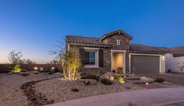 26490 W Sequoia Drive, Buckeye, AZ 85396 (MLS #6154288) :: Long Realty West Valley
