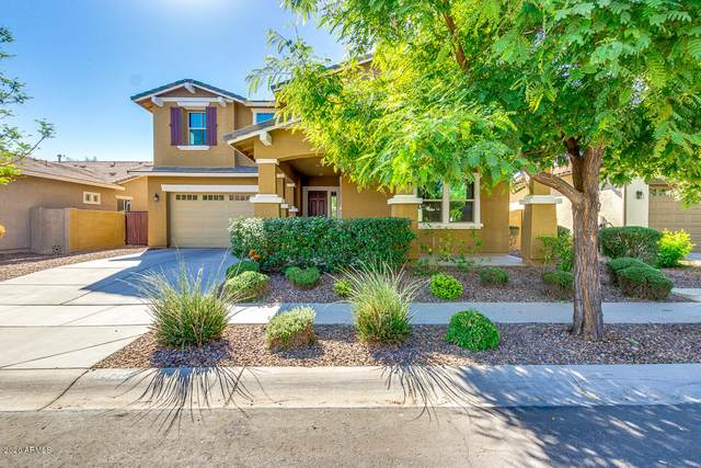 3429 E Harrison Street, Gilbert, AZ 85295 (MLS #6154290) :: The Carin Nguyen Team