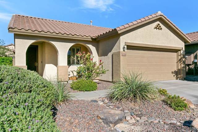 43246 N Vista Hills Drive, Anthem, AZ 85086 (MLS #6154291) :: The Riddle Group