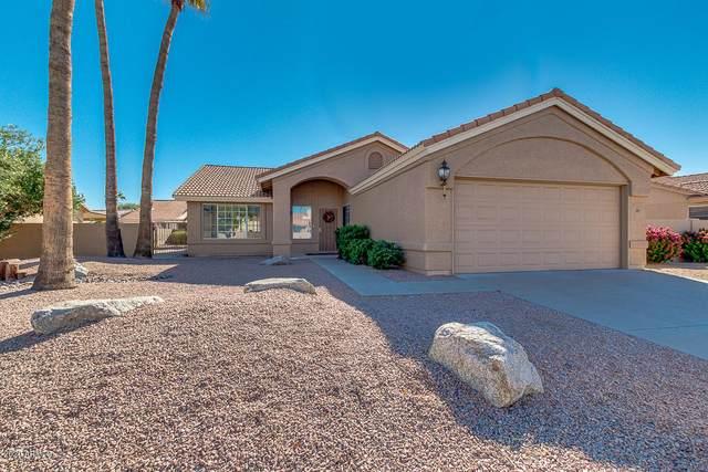 24625 S Rosewood Drive, Sun Lakes, AZ 85248 (MLS #6154303) :: My Home Group