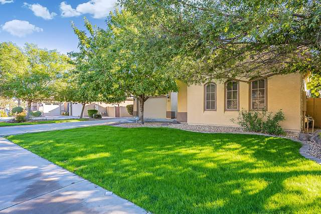 4271 S Marble Street, Gilbert, AZ 85297 (MLS #6154315) :: The Carin Nguyen Team