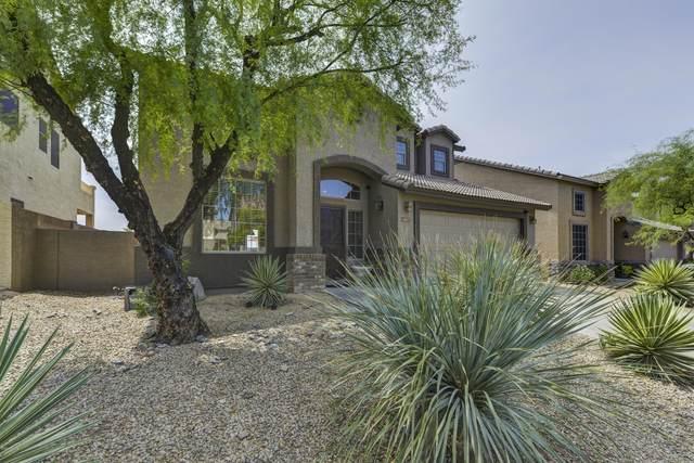 4017 E Prickly Pear Trail, Phoenix, AZ 85050 (MLS #6154375) :: The Carin Nguyen Team