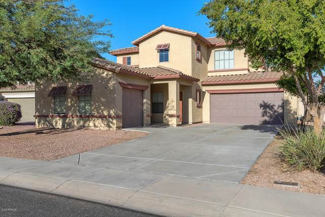 16343 N 151ST Avenue, Surprise, AZ 85374 (MLS #6154389) :: The Daniel Montez Real Estate Group