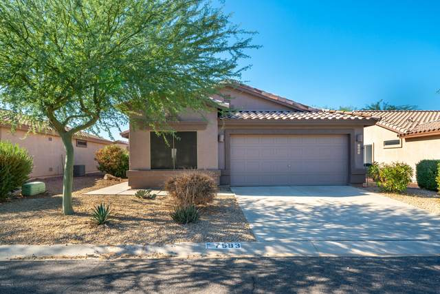 7593 E Palo Brea Drive, Gold Canyon, AZ 85118 (MLS #6154394) :: The Riddle Group