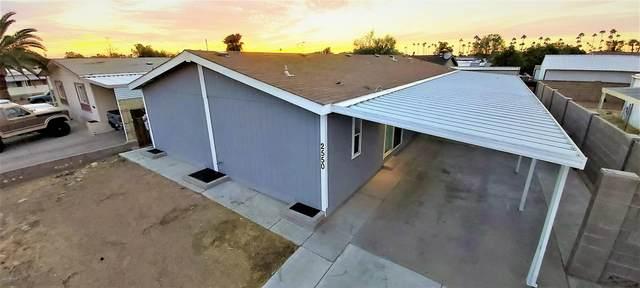 2550 E Birchwood Avenue, Mesa, AZ 85204 (MLS #6154429) :: Walters Realty Group