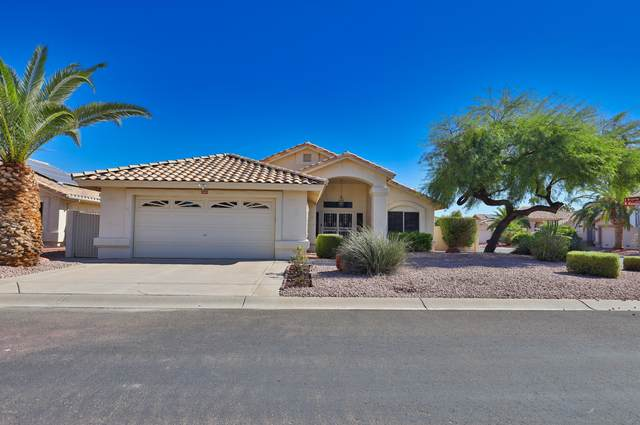 17591 N Raindance Road, Surprise, AZ 85374 (MLS #6154443) :: West Desert Group | HomeSmart