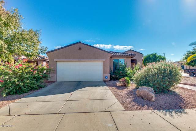 15025 W Mauna Loa Lane, Surprise, AZ 85379 (MLS #6154446) :: The Carin Nguyen Team