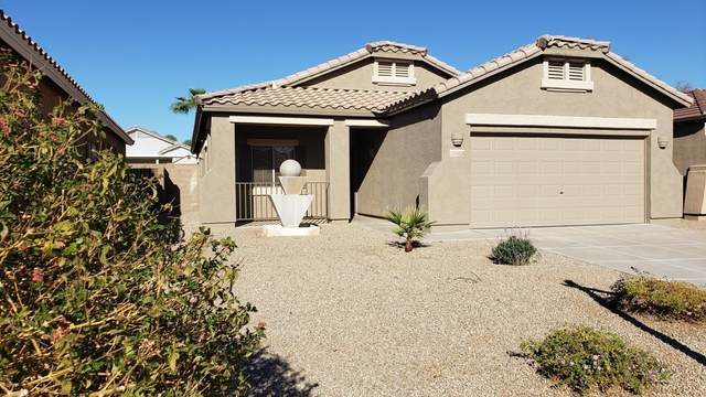 17234 W Desert Lane W, Surprise, AZ 85388 (MLS #6154479) :: The Riddle Group