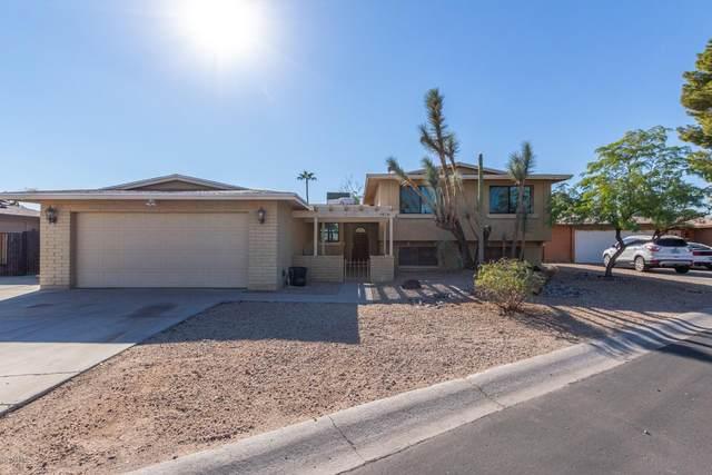 4418 W Cathy Circle, Glendale, AZ 85308 (MLS #6154503) :: BVO Luxury Group