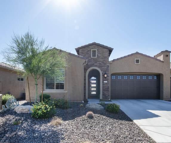 16923 W Alvarado Drive, Goodyear, AZ 85395 (MLS #6154514) :: The Carin Nguyen Team