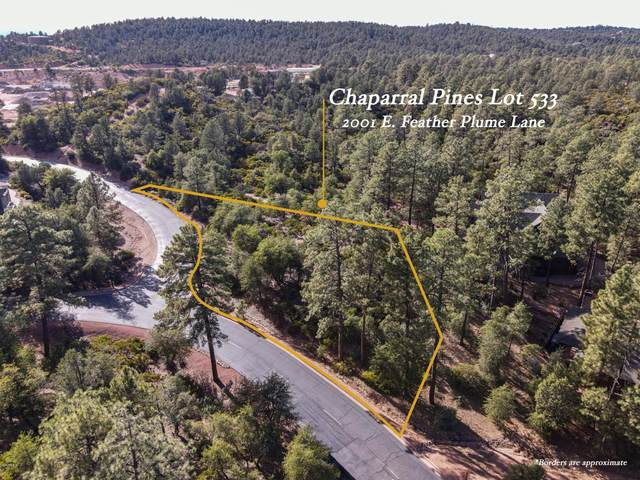2001 E Feather Plume Lane, Payson, AZ 85541 (MLS #6154538) :: The Daniel Montez Real Estate Group