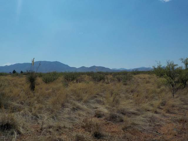 .84ac Cody Street, Pearce, AZ 85625 (MLS #6154572) :: Nate Martinez Team