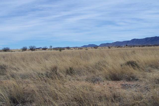 2.14ac W Orange Street, Pearce, AZ 85625 (MLS #6154581) :: NextView Home Professionals, Brokered by eXp Realty
