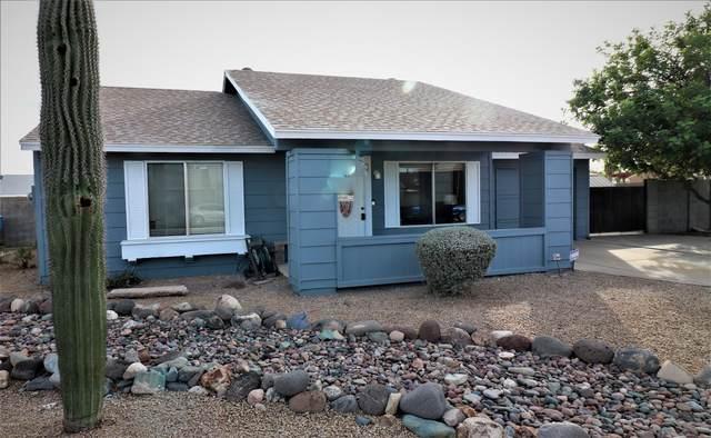 1311 W Tonopah Drive, Phoenix, AZ 85027 (MLS #6154595) :: The C4 Group
