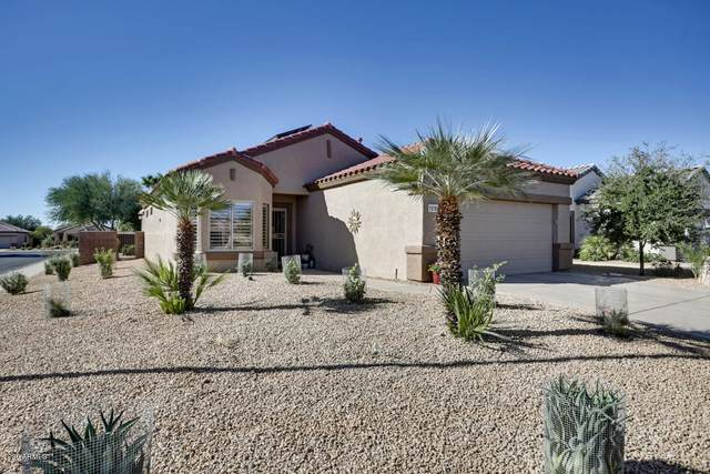 15781 W Alpine Ridge Drive, Surprise, AZ 85374 (MLS #6154604) :: D & R Realty LLC