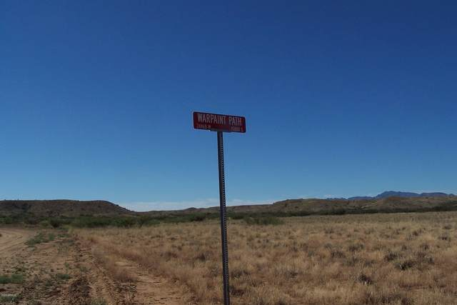 81.24ac War Paint, Willcox, AZ 85643 (MLS #6154648) :: The Copa Team | The Maricopa Real Estate Company