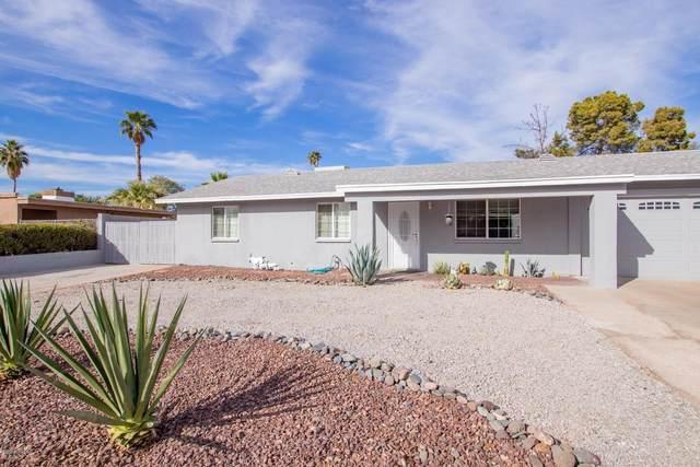 4316 E Bluefield Avenue, Phoenix, AZ 85032 (MLS #6154692) :: The Riddle Group