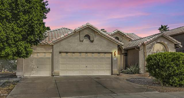 6214 W Rose Garden Lane, Glendale, AZ 85308 (MLS #6154719) :: Arizona 1 Real Estate Team
