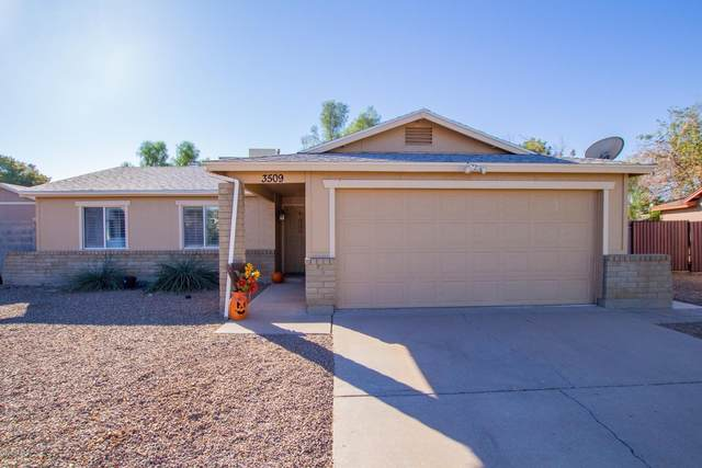 3509 E Evans Drive, Phoenix, AZ 85032 (MLS #6154771) :: Power Realty Group Model Home Center