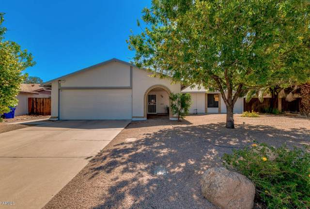 2015 N Central Drive, Chandler, AZ 85224 (MLS #6154806) :: Power Realty Group Model Home Center