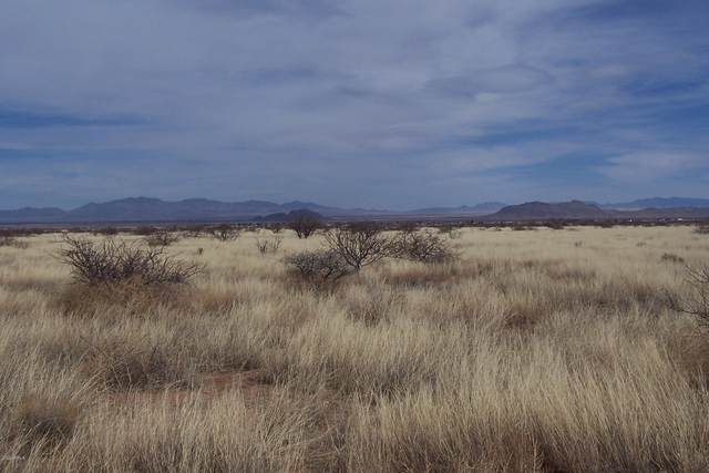 3.61 ac E Towner Street, Pearce, AZ 85625 (MLS #6154836) :: Nate Martinez Team