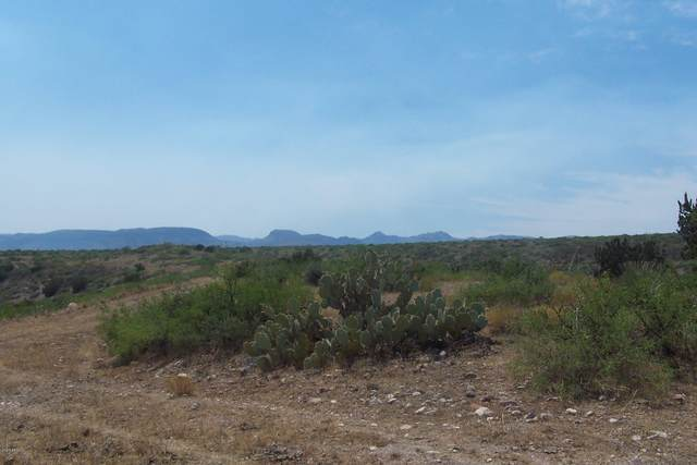 72.91ac S Lots 300-301 Dirt Wagon Team Road, Willcox, AZ 85643 (MLS #6154916) :: Conway Real Estate