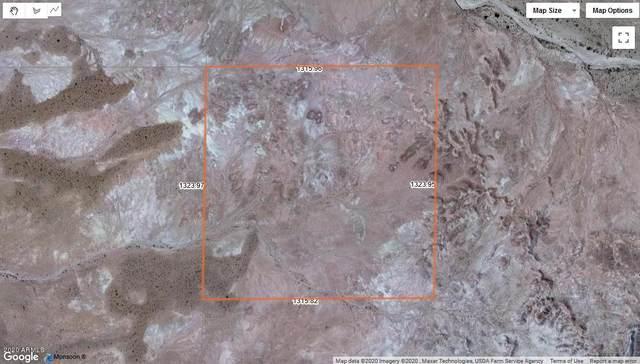 0 N Unnamed Road, Holbrook, AZ 86025 (MLS #6154920) :: Yost Realty Group at RE/MAX Casa Grande