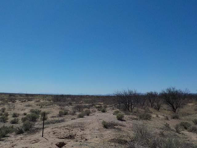80ac Webb Road, Elfrida, AZ 85610 (MLS #6154933) :: Yost Realty Group at RE/MAX Casa Grande