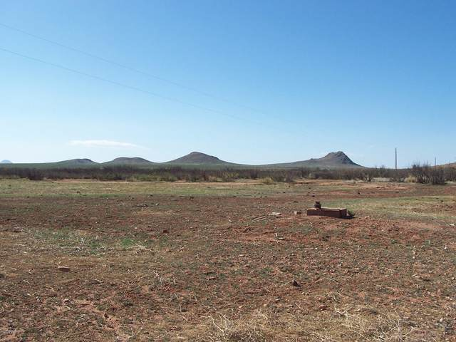 9.94ac E Buck Ranch Road, Pearce, AZ 85625 (MLS #6154948) :: The Daniel Montez Real Estate Group