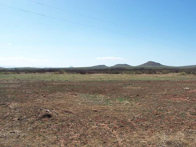 9.94ac E Buck Ranch Road, Pearce, AZ 85625 (MLS #6154949) :: D & R Realty LLC